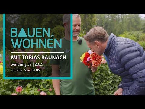 Sonne speichern - Kräutergarten - Fassadenreinigung | BAUEN & WOHNEN Sommer Special von der Mainau
