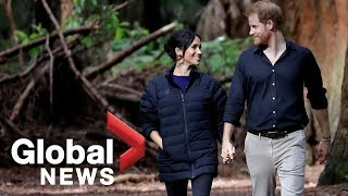 Prince Harry and Meghan enjoy New Zealand's Redwood forest in last stop of Pacific royal tour