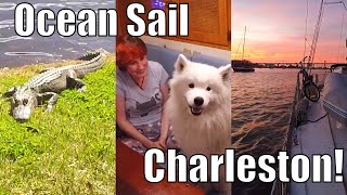 Ocean Sail to Charleston and Middleton Place | Sailing Wisdom Ep 98