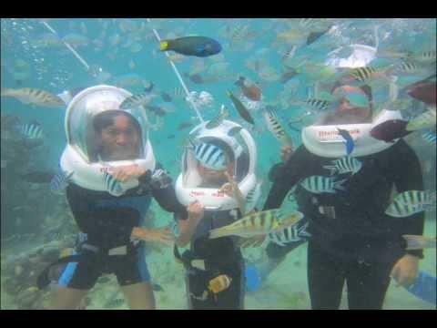 Bali Marine Walk.wmv