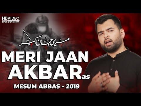 MESUM ABBAS | MERI JAAN AKBAR | NOHA 2019 | 1441