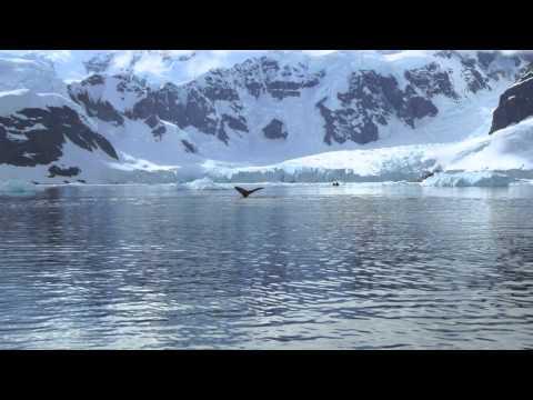 Global Warming On Antarctica