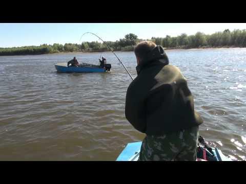 рыбалка в киришах видео