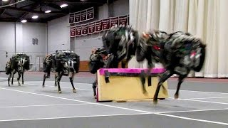 5 New Technology 2016 | Military Robots | Awesome Robots