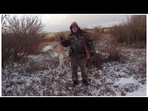 ОТКРЫТИЕ ЗИМНЕГО СЕЗОНА ОХОТЫ 2014-2015. Охота загоном на зайца русака.