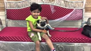 MAANYA- Friends with Pet Dog