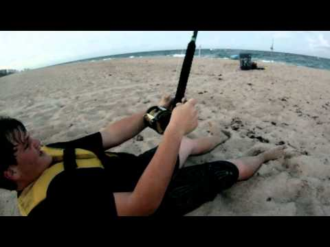 5' 8'' Great Hammerhead Shark - Beach Fishing