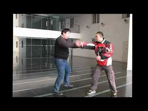 Beijing BaguaZhang Fighting Techniques/八卦掌打法 Image 1