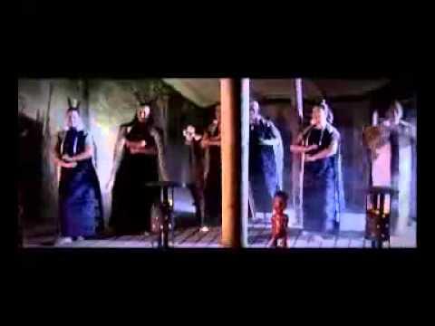 Ko Tane Maori Cultural Experience, New Zealand