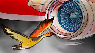 What Happens When a Bird Flies Into a Plane Engine