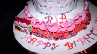 Ria 1 Year Birthday Party | VetSpot