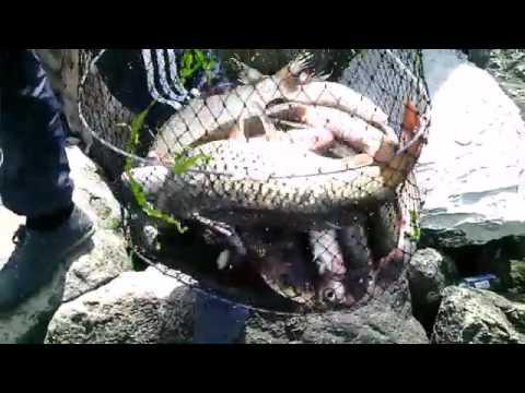 Рыбалка в Махачкале