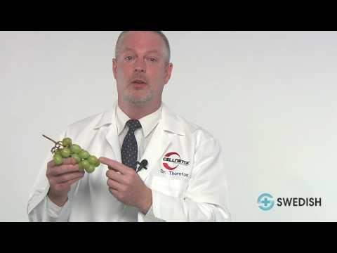 Understanding Pathology for Breast Cancer