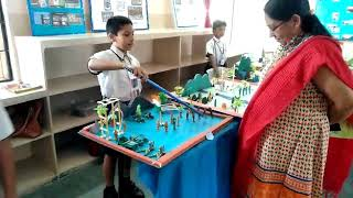 Project at school science fair(2)