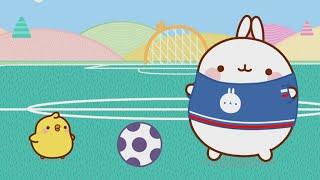 Molang and Piu Piu are playing football UEFA Euro 2016 Special | Molang Special - Cartoons for kids