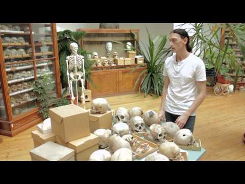 Antropológiai Műhelytitkok: 3. Koponyalékelés és -torzítás