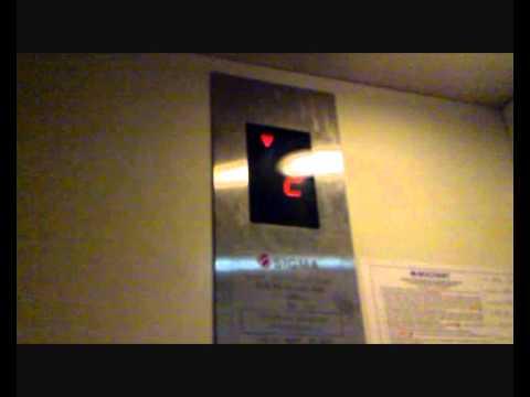 Elevator Muzak