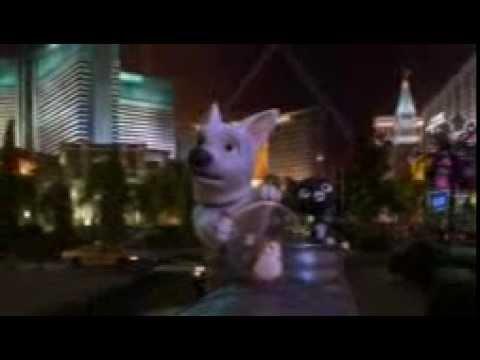 Bolt un perro fuera de serie ladrando a la luna youtube for Videos fuera de youtube