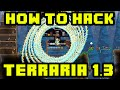 Terraria Mods   How To Hack Terraria 1.3   INFINITE MINIONS, SPAWN ITEMS, MONSTERS & MUCH MORE!