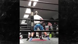 Logan Paul's right hook (TMZ sports) Link in bio