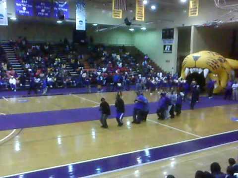 Q Dog Dance BC Q DOGS DOIN ...