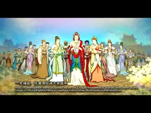 Great Vows of Bodhisattva Samantabhadra 普贤行願品
