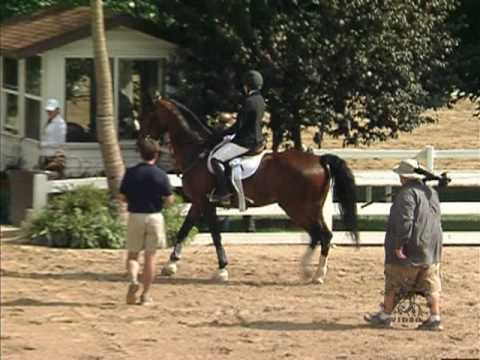 Lillie Ross & Armstrong - Showplace Summertime July 2010 Video