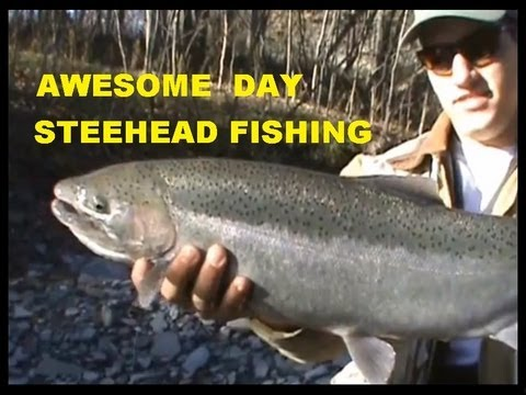STEELHEAD Fishing - Awesome Day on ERIE Trib