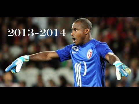 Vincent Enyeama - Best Saves - 2013/2014