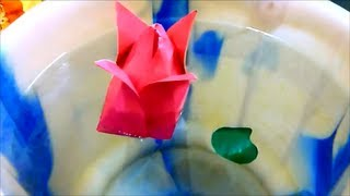 How To Make A Paper Lotus ( Origami ) Easily.