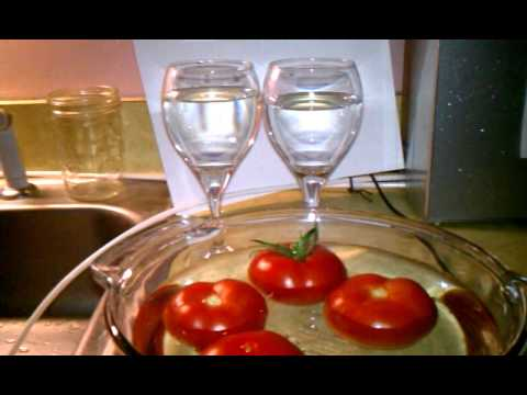 TOMATO DETOX WITH PHPERFECT ALKALINE WATER-Part 2 of 2