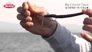 ビッグクローラー7インチ 国保プロ解説動画