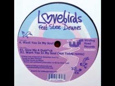Lovebirds Feat Stee Downes - Want You In My Soul (hot Toddy Remix) video