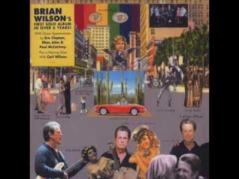 Brian Wilson - Soul Searchin