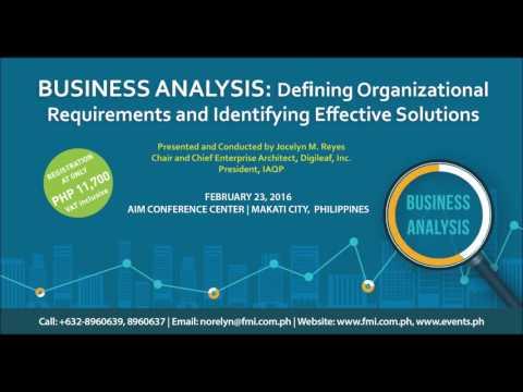Business Analysis 2016 Radio Ad