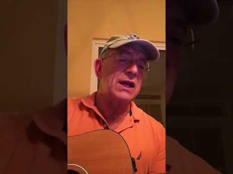 St. Vincent - Los Ageless (cover) - lyrics/chords in description