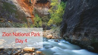 Large Format Landscape Photography in Zion National Park: Day 4