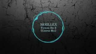 Skrillex Video - A Cryptic Mix: Skrillex