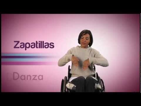 Módulo Danza del Video Diccionario de Lengua de Señas Venezolana Tomo 3