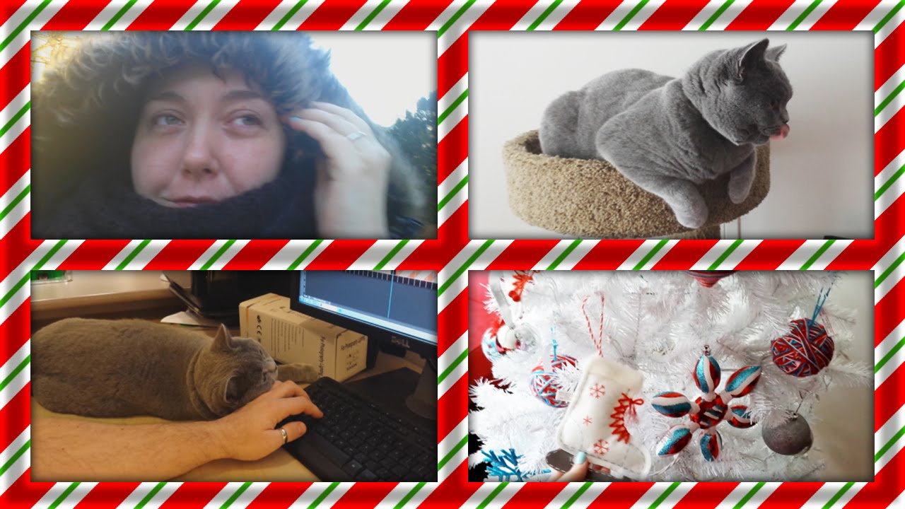 Vlogmas Day #5 - Sick day