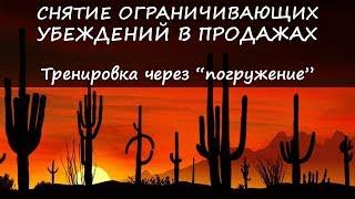 Размышления о жизни и продажах 6. Оптовая торговля кактусами | Сергей Плечков - тренинги по продажам
