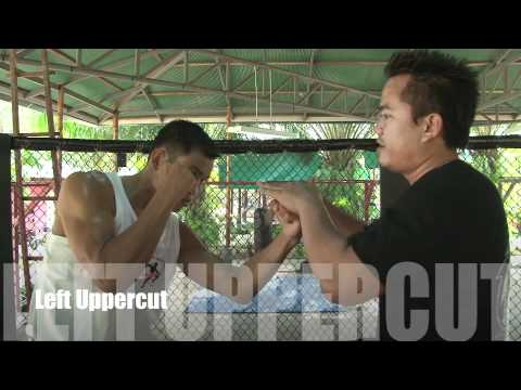 Tiger Muay Thai and MMA: Kru Yod Basic Punching Technique Image 1