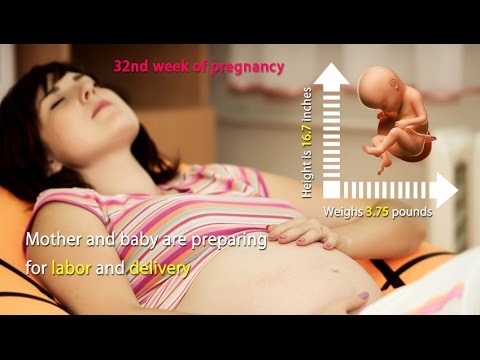 32 Weeks Pregnant: See the Amazing Growth of Your Baby