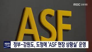 정부-강원도, 도청에 ASF 상황실 운영