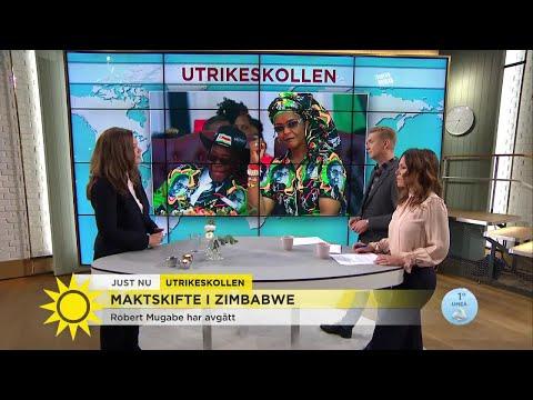 """""""Det ryktas att Mugabe slipper riksrätt och får 10 miljoner dollar"""" - Nyhetsmorgon (TV4)"""