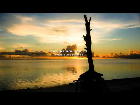 Nature Sound 13 - THE MOST RELAXING SOUNDS -
