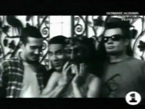 Red Hot Chili Peppers - VH1 Ultimate Albums - Blood Sugar Sex...