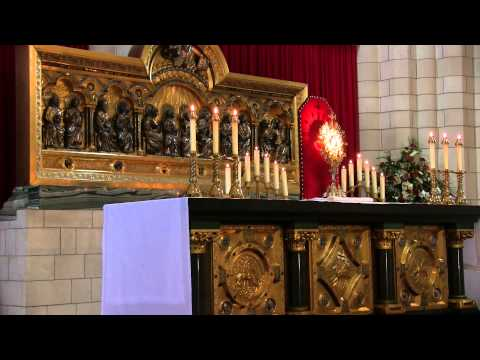 """Making our Communions with Our Blessed Mother"": Sermon by Fr J Lawrence Polis FI. A Day With Mary"