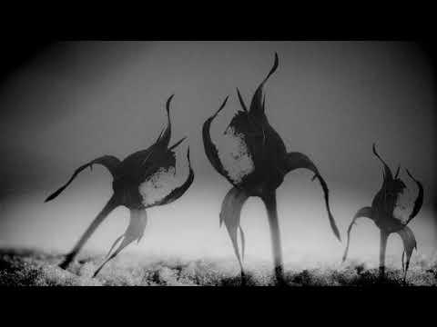 Gaga & Mateo - Dust T78 Remix