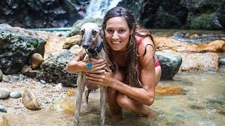Don't eat the dog!! Exploring Ambon (Sailing Nandji) Ep 103